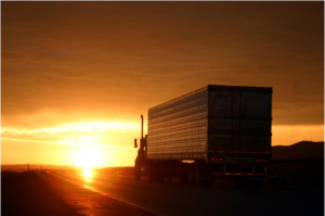How to prevent most common truck driver injuries